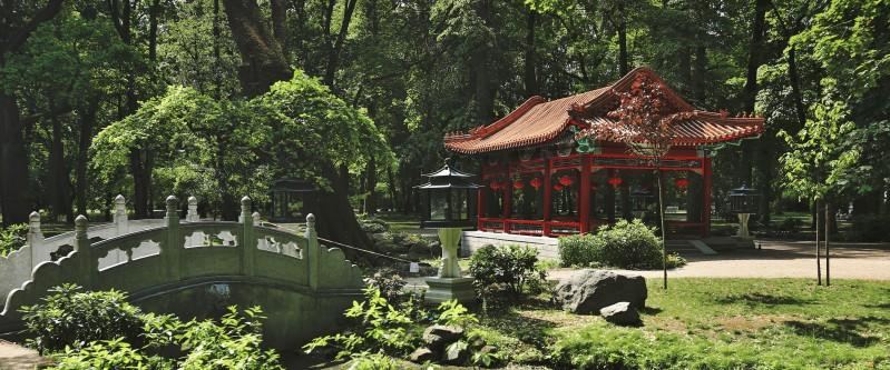 Ogród Chiński łazienki Królewskie