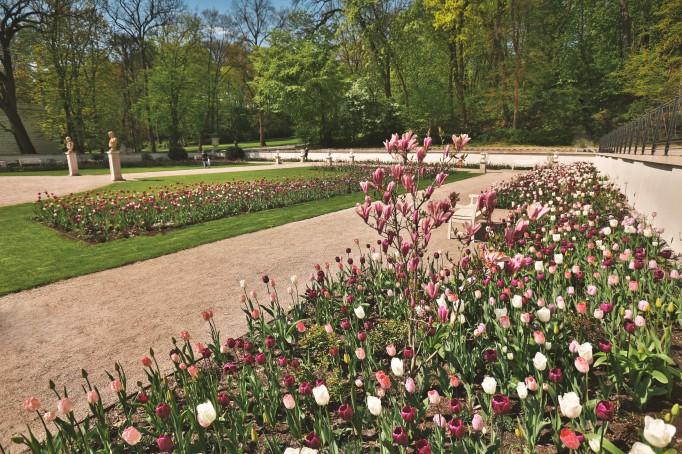 Lazienki krolewskie w warszawie for Royal dutch gardens
