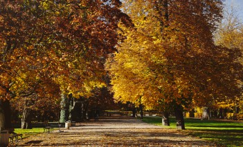 The Łazienki gardens will be open longer. New guidelines apply